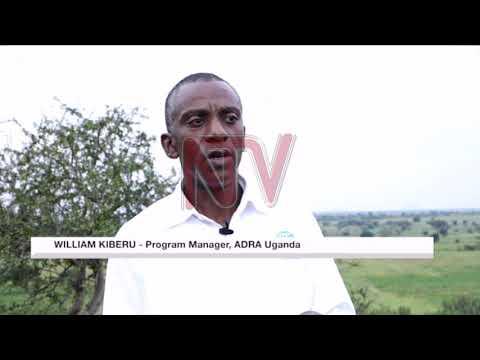Karamoja leaders decry inadequate COVID-19 relief
