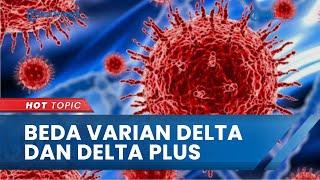 Muncul Varian Baru Covid-19 Bernama Delta Plus dan Ada di Indonesia, Ini Bedanya dengan Varian Delta