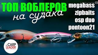 Рекламный воблер москва