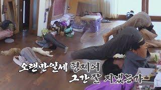 (흐라챠) 부부 요가단 컴백! 환영하네, 윤아 자매여★ 효리네 민박2 11회