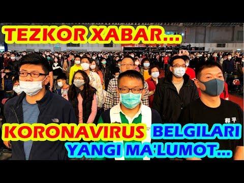 Wart virus genital