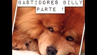 Bastidores Parte 1 - Billy, o chow chow agressivo na casa de Alexandre Rossi