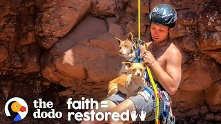 Guy Rappels Into Canyon To Save Abandoned Dogs | The Dodo Faith = Restored