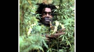 Peter Tosh - Skanky Dog