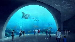 The Aquarium - Architectural Thesis