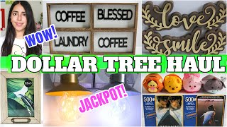 DOLLAR TREE HAUL*JACKPOT ITEMS* 2020