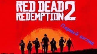 Red Dead Redemption  2 - Она вышла !!! (Первый взгляд) (PS4)