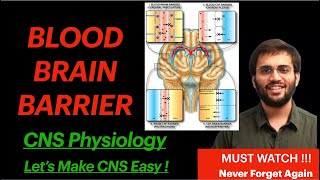 Blood Brain Barrier | Structure, Importance CNS Physiology Video
