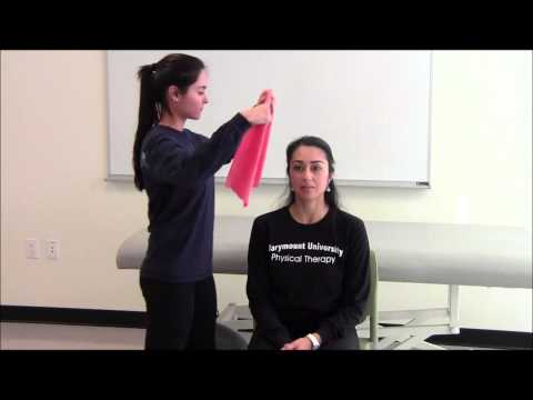 Cable Lateral Neck Flexion (with belt)