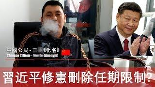 一位中國公民對習近平修憲刪除任期限制之看法