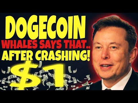 DOGECOIN NEWS: HUGE PUMP COMING SOON.. WILL HIT PLAN A $5 ...