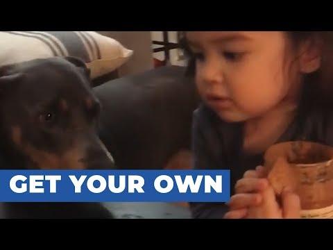 הילדה הזו רק רוצה לאכול בשקט, אבל לכלב שלה יש רעיון אחר...