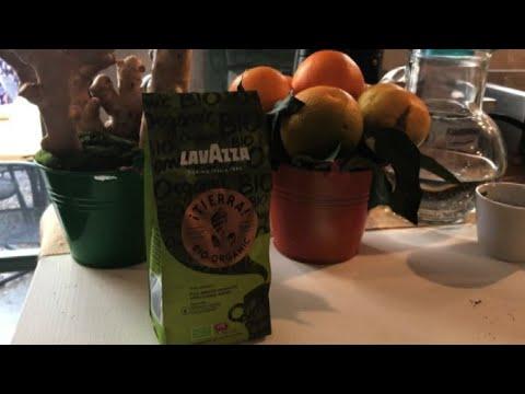 Lavazza lancia caffè Tierra Bio-Organic per segmento domestico