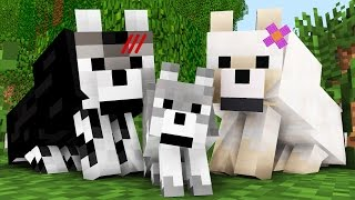 Wolf Life: The Birth    Minecraft Animation