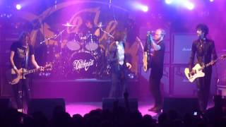 The Darkness - Curse Of The Tollund Man Live