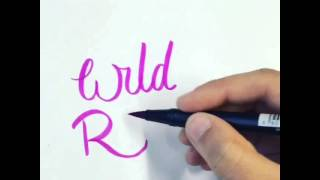 Hand Drawn Type - Wild Rose