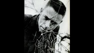 Alan Watts The Web Of Life