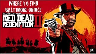 Where to find Baltimore Oriole in Red Dead Redemption 2