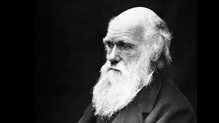 Answers News: Replacing Darwin – September 13, 2018