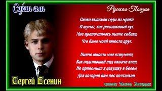 Сукин сын —Сергей Есенин —читает Павел Беседин