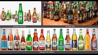 Лучшее светлое пиво по версии экспертов Росконтроля 2019