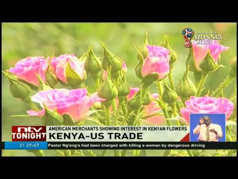 American merchants showing interest in Kenyan flowers