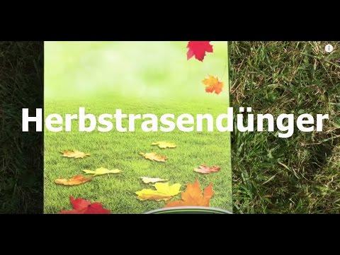 Schöner und grüner Rasen mit Herbstrasendünger | SONNEN-beet.de