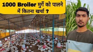 1000 Broiler Chicken Farming Cost, Poultry Farming Business