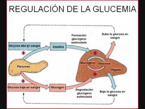 Retinopatía diabética y la hipertensión