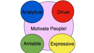 How to Motivate the 4 Personality Types | How to Speak The Secret Language of Personality Styles