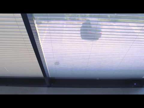 Lumon Sonnenschutzplissees transparent grau