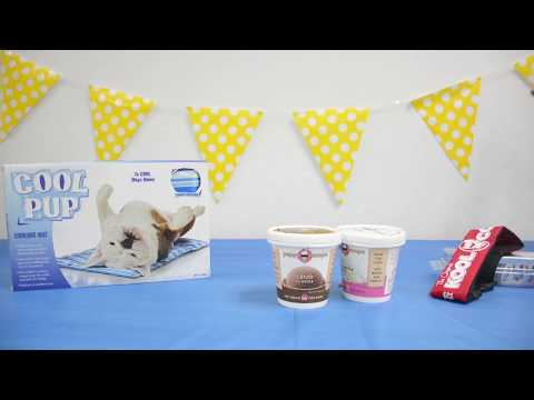 Puppy Scoops Ice Cream Mix for Dogs - Peanut Butter Flavor (5.25 oz) Video