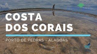 Mergulho Livre na Costa dos Corais