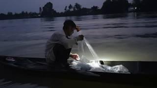 U70 vẩn yêu nghề sông nước, kiếm sống bằng nghề lưới | Săn bắt SÓC TRĂNG |