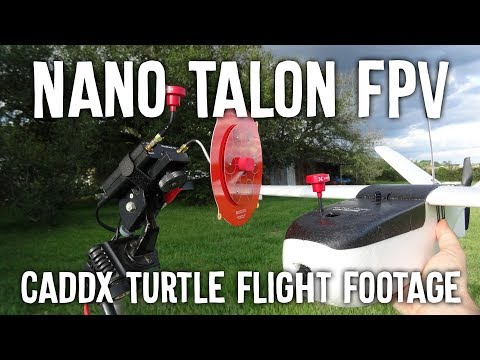 nano-talon--flight-with-the-turtle-lol