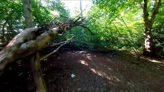 Diatone Taycan FPV GoPro 5 Session Reelsteady Go