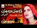 Tu Vichran Vichran Karni - Best of Naseebo Lal - HI-TECH MUSIC