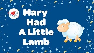 Mary Had A Little Lamb Nursery Rhyme With Lyrics 🐑 | Children Love to Sing