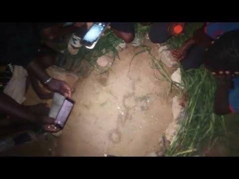 Vidéo: Incroyable! Le nom du prophète Mouhamet écrit par des fourmis à sébikotane