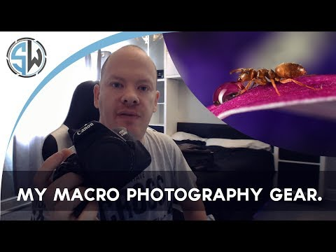 My macro photography gear.