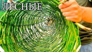 ЛОВУШКА ДЛЯ РЫБЫ - ВЕРША | МОРДА | МЕРЕЖА - Native Russian Fish Trap