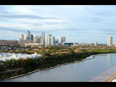 Video Tampa Florida Attractions