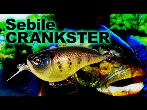 Sebile Crankster 55 videó