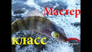 Какая рыба не клюет в пруду зимой
