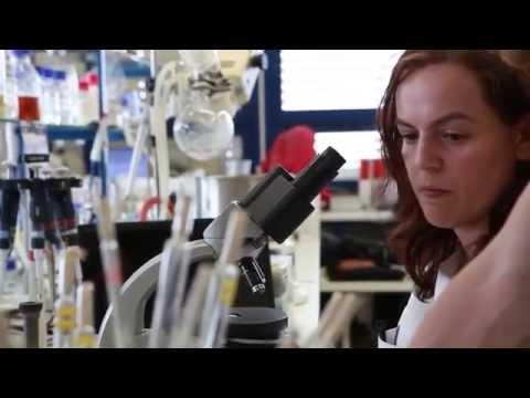 Download Licenciatura em Biologia Celular e Molecular Mp4 HD Video and MP3