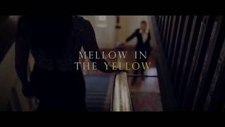 Mellow in the Yellow - A black tie fundraiser to support our local community.