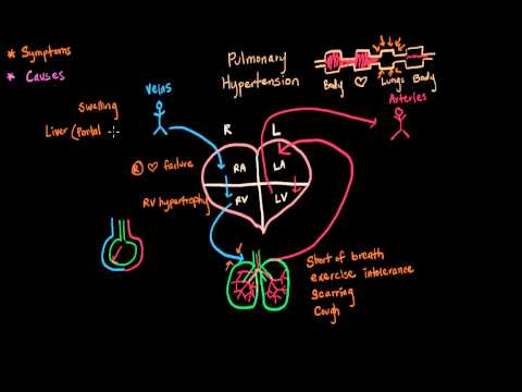 Jak posílit cévní stěny při hypertenzi
