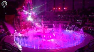 """В Новосибирске продолжает свои гастроли цирк на воде """"Шевченко-шоу"""". Чем удивляют зрителей артисты?"""