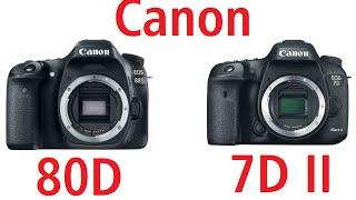 canon 80d vs 7d mark ii hindi - मुफ्त ऑनलाइन वीडियो