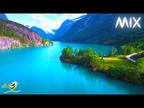 Relaxing Music with No Loops & Beautiful Nature Videos